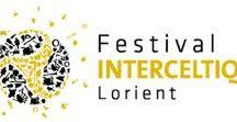 Festival - France - Fleurs de Soleil