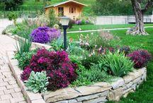 Aiuole fiori e giardinaggio