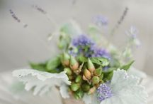 Wedding / by Zoe Schibler