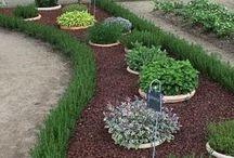 Garden Ideas - Grow Love / Outdoor
