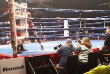 Beau Boxing / by Beau Rivage Resort & Casino