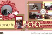 CTMH scrapbook layouts-