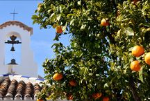 Walking Holidays in Andalucia