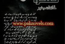 چاند اور صحرا ۔۔۔ دوسرا کتابی ایڈیشن / دلچسپ کتاب