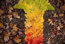 artfoto podzim