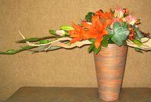 Asymmetrical arrangement