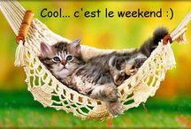 C'est le weekend !!