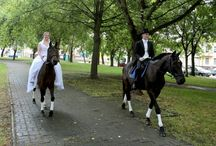 jazda na koniach