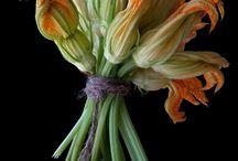 Squash-Blossoms