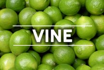 VINE / Check out NutriBullet's Vines! New one up every Thursday! / by NutriBullet