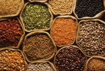 Exporters of Spices / varshaindustries Dill_Seeds Kalunji_seeds Fennel_Seeds Tamarind http://varshaindustries.co.in/spice.php