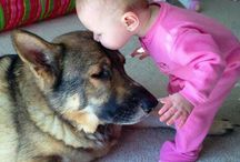 Babies and their dogs