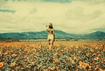 Neil Krug / by Michelle Huggleston