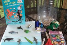 Educational Ideas & Play: Summer / by S Kurtenbach