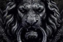 Leeuw / Lions