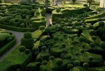 Enchanted Gardens / by Lia Nielsen