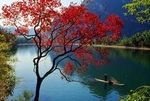 Geweldige natuur!