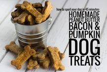 yummy | dog food