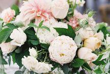 Wedding centerpieces / Wedding centerpieces