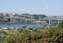 Terreno com vista para o rio Douro / Terreno com 3600m² Viabilidade para construção de moradias em curso. Para mais informações ligue 933 406 871 ou mande mensagem para ahipolito@remax.pt