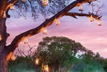 Romance at Lion Sands Game Reserve