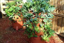 GARDEN VERTICAL / Forget the Garden Tiller, Garden Rake & Hoe! GARDEN VERTICAL with the EarthTower Garden and the GARDEN TOWER 2