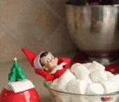 Elf on the shelf / by Amanda Houtz