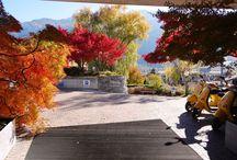Herbst 2015 / Bäume und Sträucher färben ihre Blätter, die reifen Trauben und Äpfel wurden geerntet, einige hohe Bergspitzen sind schon mit Schnee bedeckt. In den Tälern sind die Temperaturen nun angenehm und man kann tolle Spaziergänge entlang der zahlreichen Waalwege unternehmen. Sofern man die richtige Ausrüstung besitzt so sind leichte Touren auch in höheren Lagen möglich, denn im Herbst ist die Aussicht von hoch oben am Schönsten.