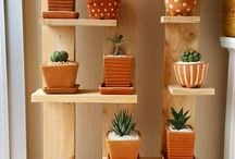 Exterior plantas