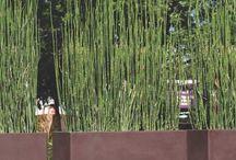 biombos para jardines
