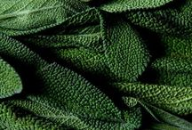 --green--