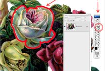 Photoshop/Illustrator and Photography Tutorials