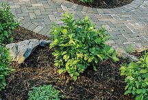 Walkways & Patios / Stone, paver, slate, brick... garden pathways, walkways and patios are part of a beautiful hardscape.