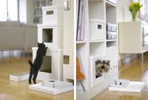 Houses & Things for Cats & Dogs / by Jerry Meents