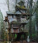 Алиса. В стране чудес. В зазеркалье. В лесу.