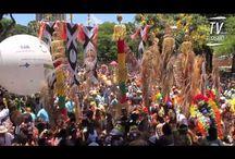 Carnaval 2014 / :D