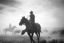 vaqueros y caballos