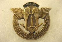 badges NAVY commandos    Special Forces  beret badge