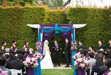My one day wedding