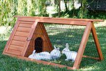 bunny&hen home