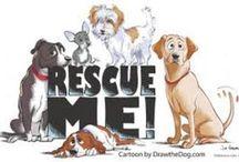 Save a Life, Adopt! / Urbana, Ohio - pet adoptions