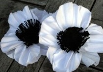 Headbands, Flowers and Bows! OH MY! / by Ashley Todd
