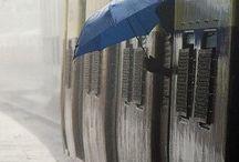 Rain♥