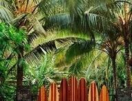Hawaiian Plantation