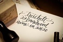 Calligraphy / by Kate Thompson