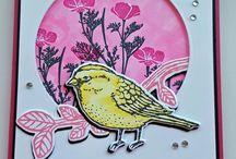 Best Bird Bundle stampin up