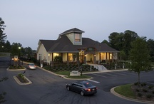 Springs at Greystone Apartments / Springs at Greystone is a beautiful gated, pet-friendly, award winning apartment community just 15 minutes from downtown Birmingham, Alabama.