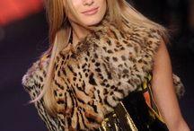 beauty leopard