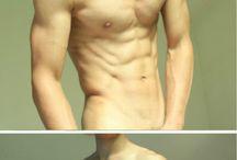 男性の胴体