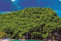 • Caribbean | St. Lucia •